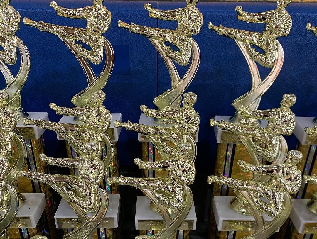 Trophies are awarded to those who receive 1st, 2nd, or 3rd, in their division during a karate tournamen