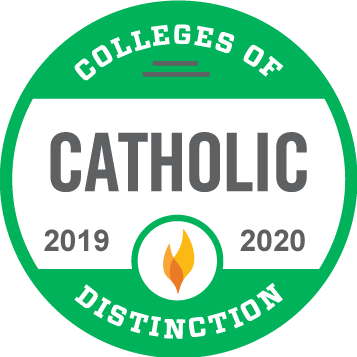 Catholic College of Distinction 2019-2020 award badge